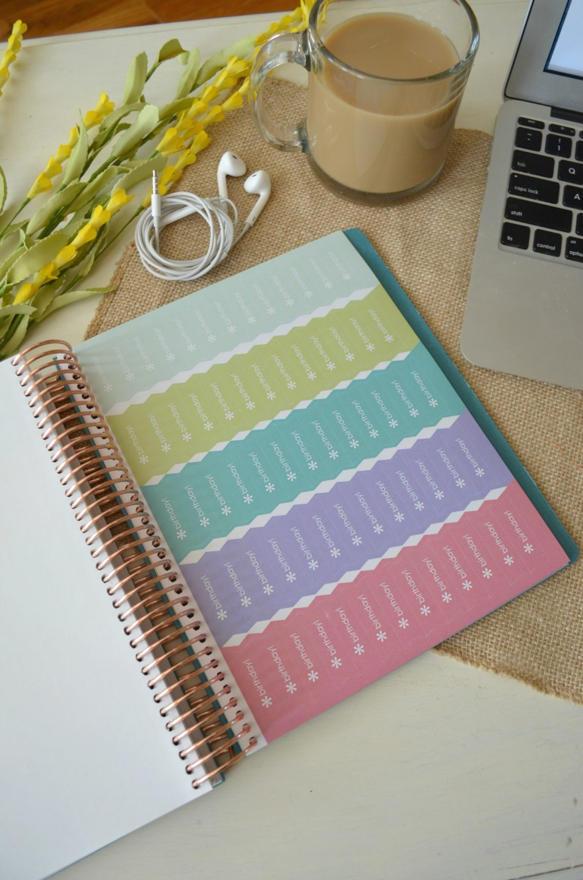 Erin Condren 2017 LifePlanner Review