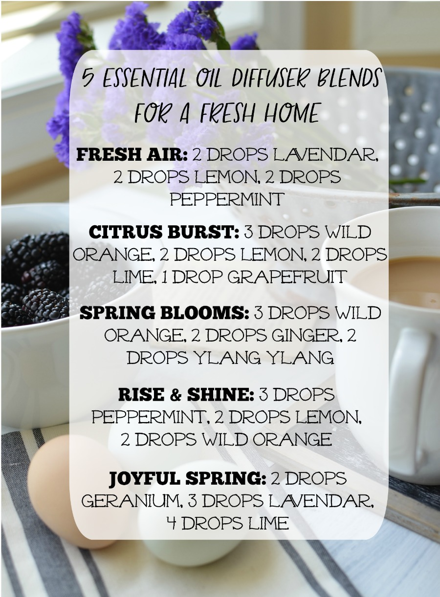 5 Essential Oil Diffuser Blends for a Fresh and Clean Home
