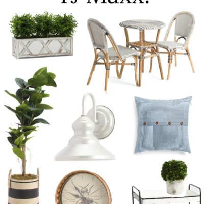 Amazing Finds (with free shipping!) at TJ Maxx