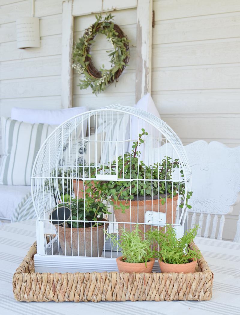 DIY Vintage Bird Cage Planter. Great idea for easy farmhouse style summer garden decor!