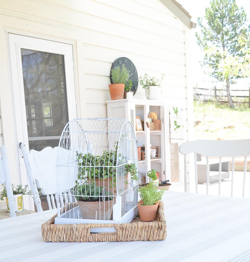 Birdcage Planter: DIY Vintage Bird Cage Planter-7