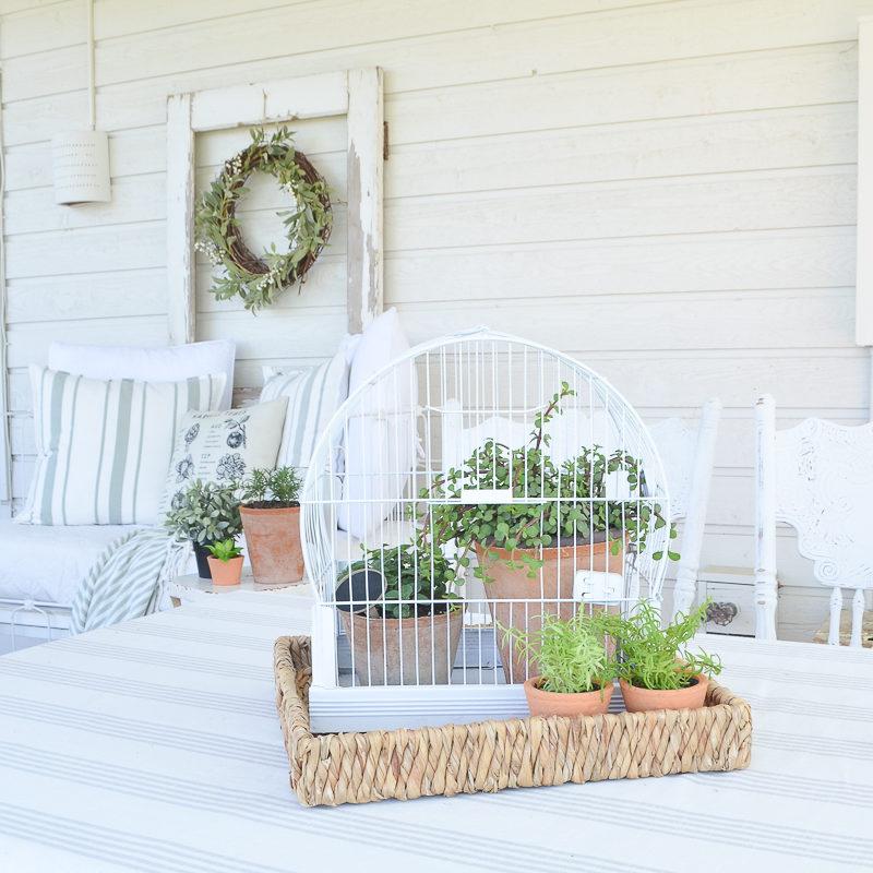 DIY Vintage Bird Cage Planter