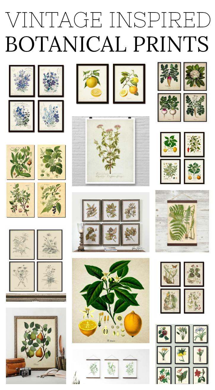 Vintage Inspired Botanical Prints. Farmhouse style botanical prints!
